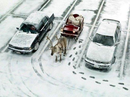 Дед мороз припарковался