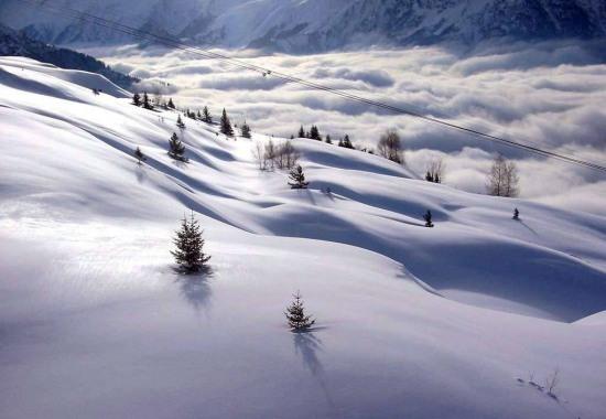 Альпийские красоты