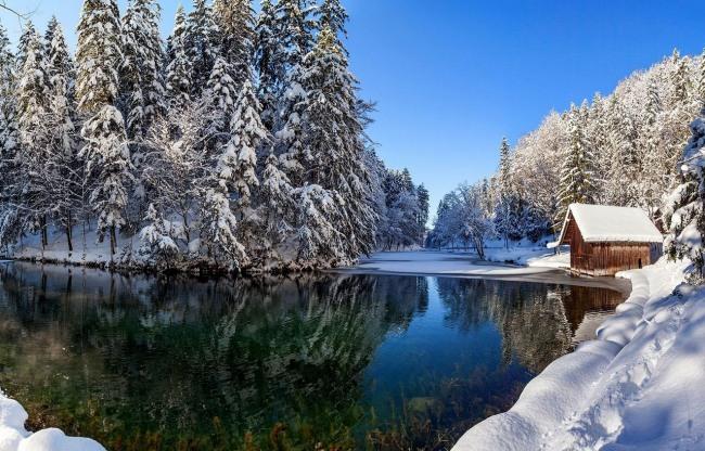 Зима во всей красе
