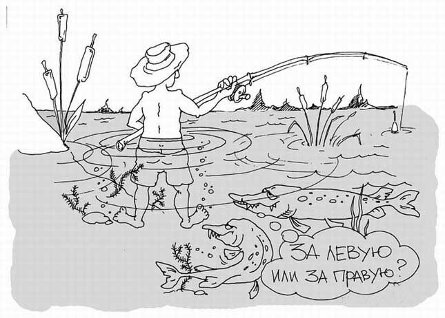 Рыбалка и щуки