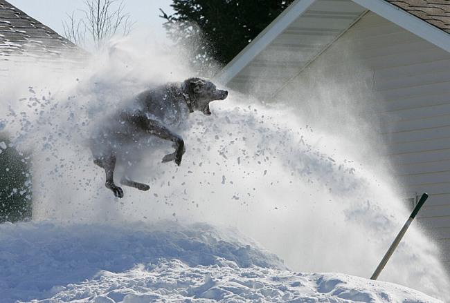 Уборка снега бывает веселой