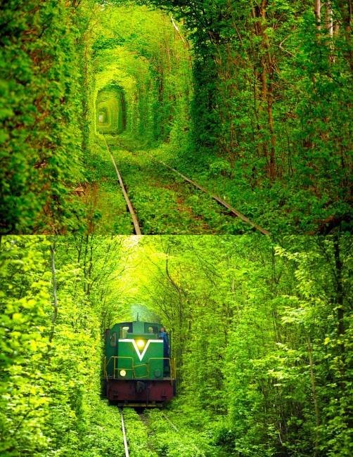 Зеленый коридор для поезда