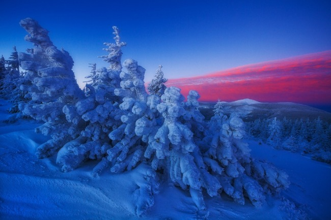Зимний багровый закат