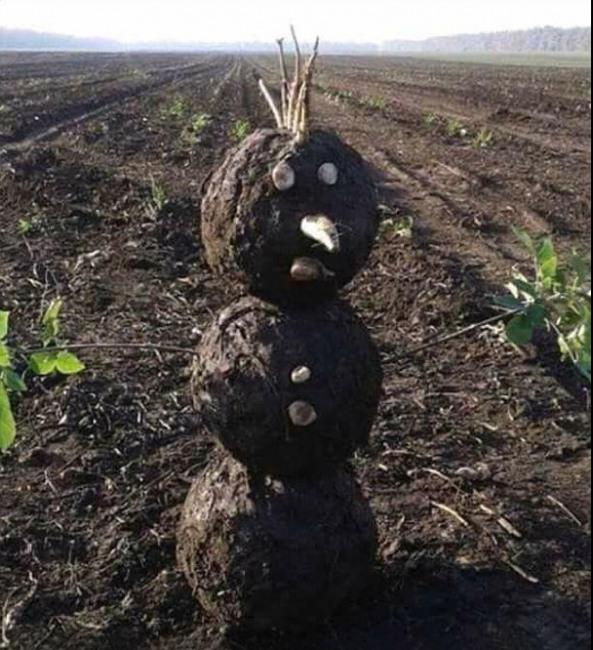 Снеговик в период глобального потепления