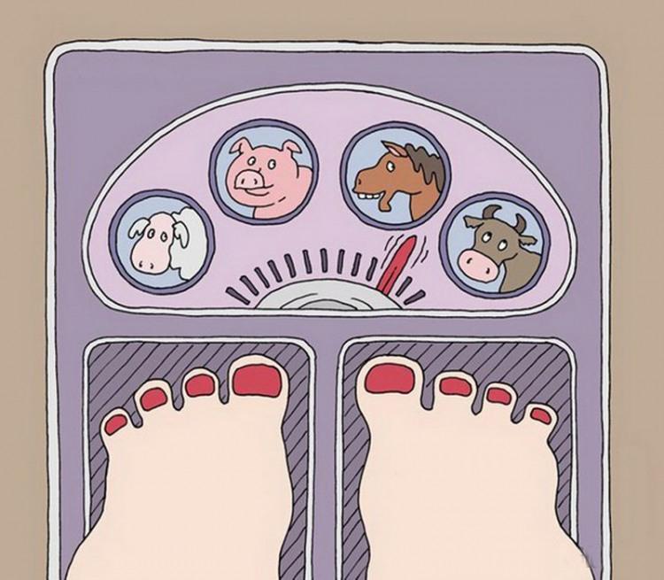 Весы для женщин