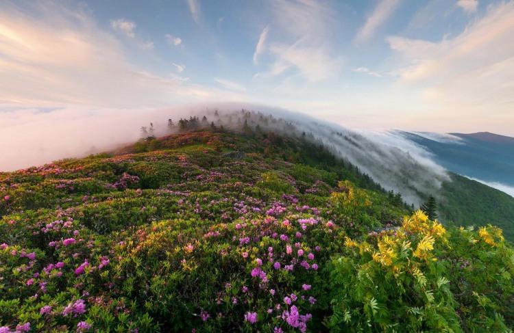 Утренний туман в горах