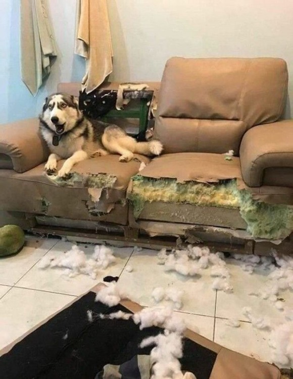 Это был не я
