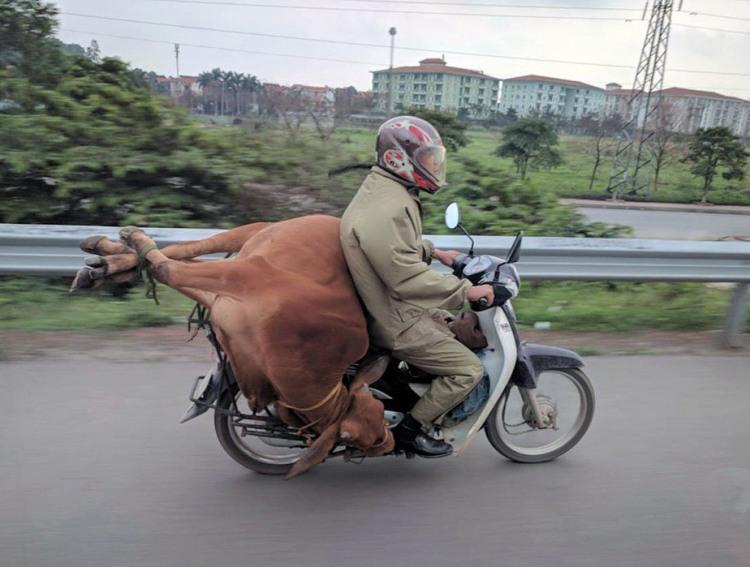 Решил свою телку покатать на мотоцикле