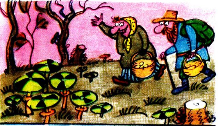 Чернобыльские грибы
