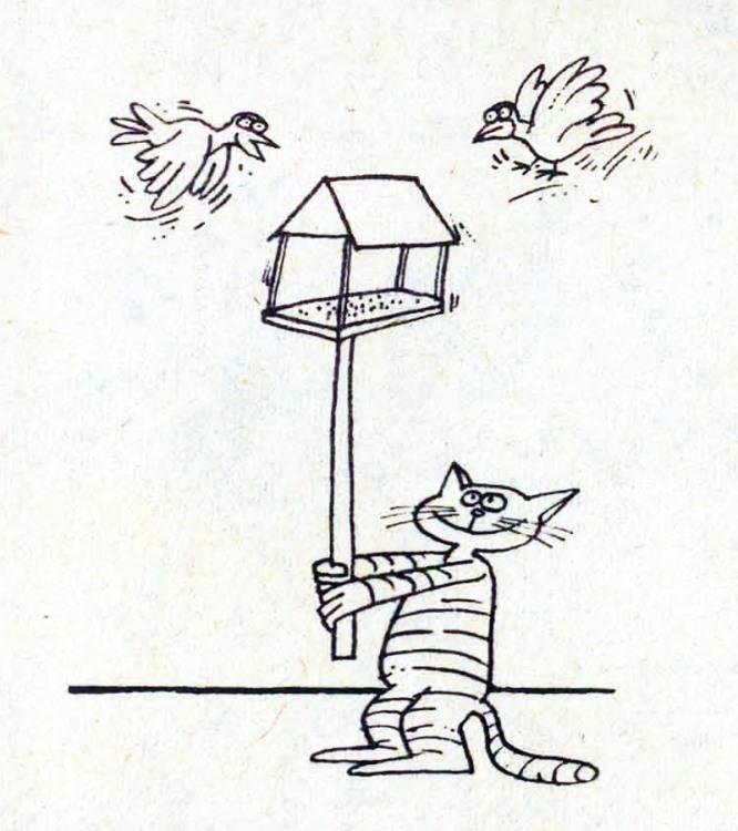 Кормушка для птичек от доброго кота