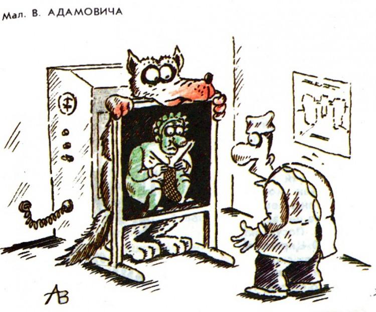 Рентген серого волка