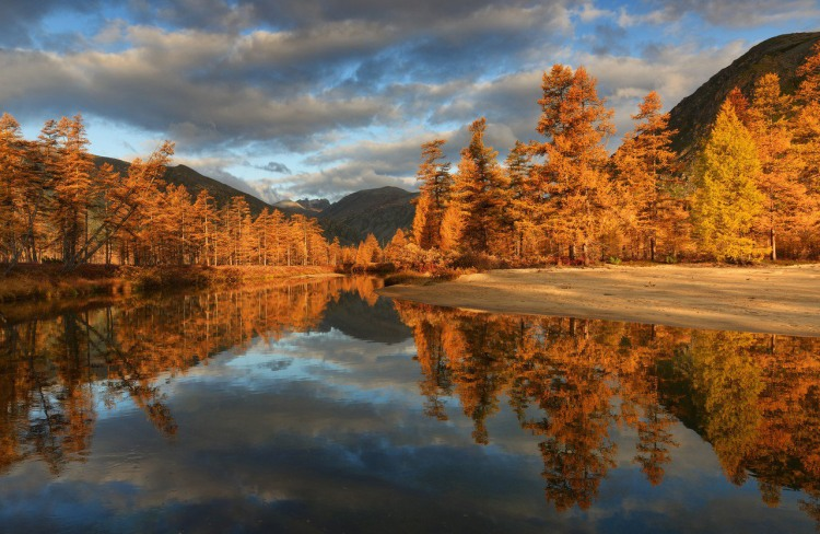 Золотая осень на берегах озера