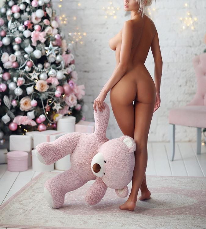 Хозяйка не бросила мишку и взяла с собой встречать новый год