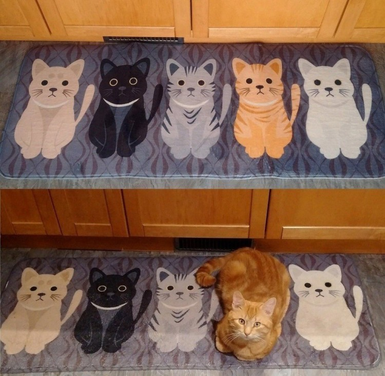 Коврик для кота