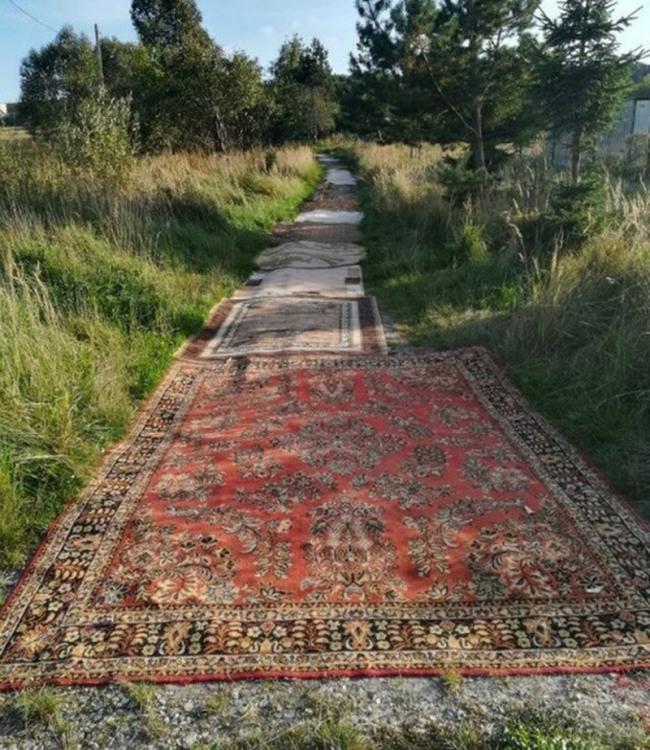 Дорога из ковров